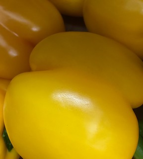 Yellow Peppers 2 | by Vicars Game Ltd