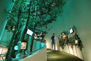 Mount Hamiguitan Natural Science Museum | by eazytraveler
