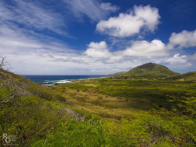 Oahu Skies