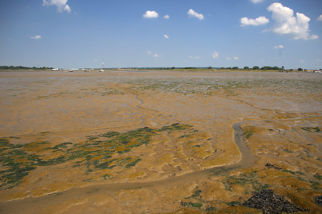 Mud beside the Northey Island Causeway
