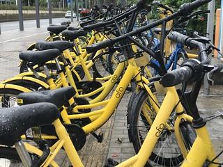 Ofo bike   by jonrussell