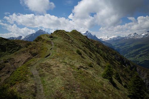 m2404348 rangefinder digitalrangefinder messsucher leica leicam mp typ240 type240 28mm elmaritm12828asph hiking wanderung randonnée escursione tguma heinzenbergergratwanderung obertschappinabischolpasstrin pizbeverin alps alpen switzerland schweiz suisse svizzera svizra europe graubünden grisons grischun heinzenbergergrat safiental trail wanderweg clouds sky ©toniv 2017 170603