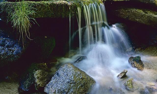 Jeseníky - Poniklý potok