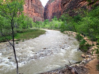 Utah - Zion National Park - Riverside Walk - Virgin River (3) | by jared422_80