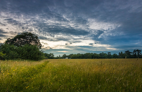 a late evening summer walk childer thornton meadow rivacrevalley little sutton cheshire ellesmereport uk england sunset
