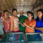 41435-022 and 41435-053: Tonle Sap Poverty Reduction and Smallholder Development Project in Cambodia