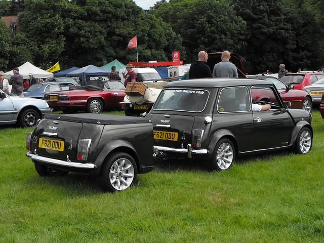 Mini - F621 ODU