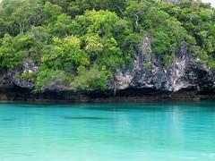 Isla_de_los_pinos_Nueva_Caledonia