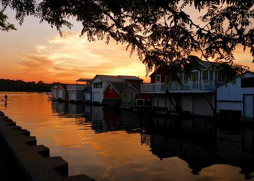 trackhead trackheadstudios trackheadxxx adamhall lake new york canandaigua sunset sunsets sunrise sky boating reflections trees silhouette silhouettes