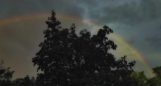 Rainbow | by Cat Sidh