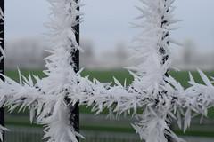 winter-2017-9
