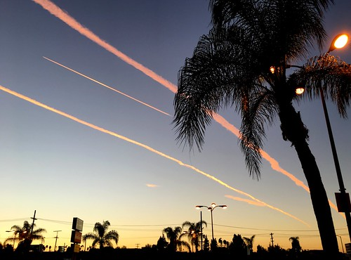 california chemtrails sunset composition usa landscape america street city palmtree cloud clouds sky weather airplanes pollution losangeles venturablvd