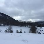 Winterplausch 2017