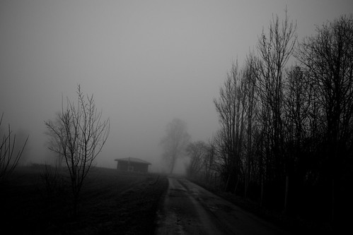 Haunted | by Bodomi