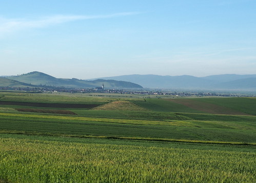 erdély transylvania transilvania székelyföld nyár summer mező field falu village ditró gyergyóditró ditrău gyergyóimedence reggel morning olympusem5