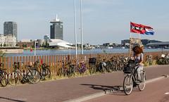 Summertime in Amsterdam