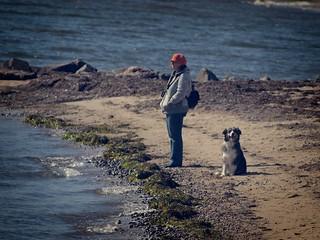 Frau & Hund am Strand - Fehmarn Ostsee - Germany