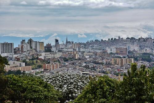 manizales colombia caldas parquelosyarumos ecoparquelosyarumos losyarumos ecopark cloudforestpreserve cloudforest preserve