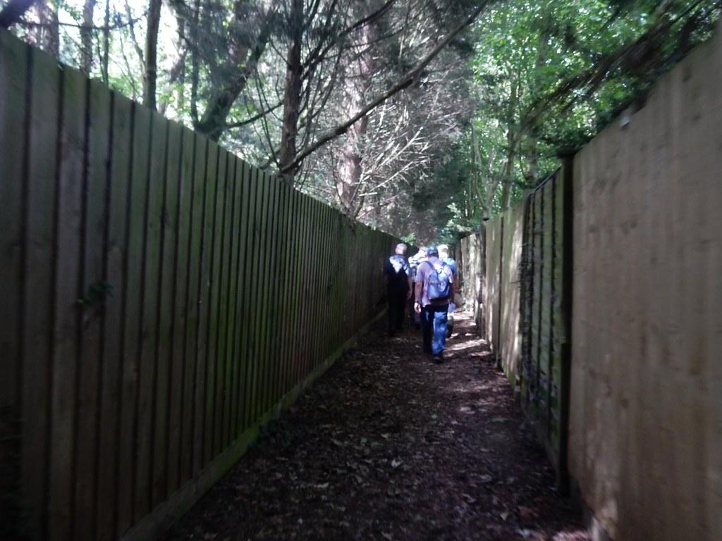 Between fences Ely Circular