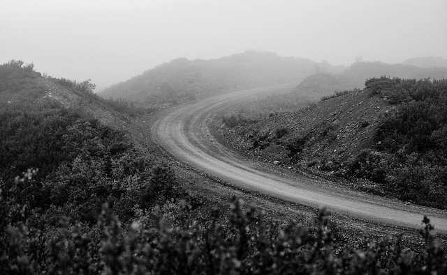 Denali Highway 2017 Shared-69