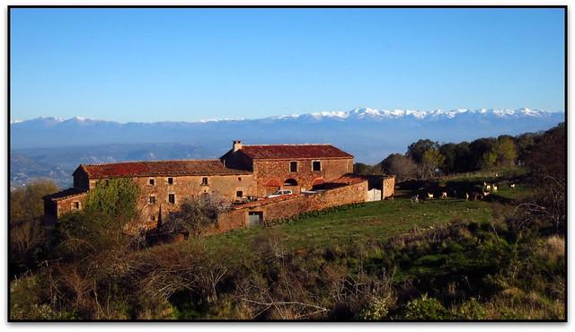 El Bellit i els Pirineus, Tagamanent (el Pla de la Calma, el Vallès Oriental)
