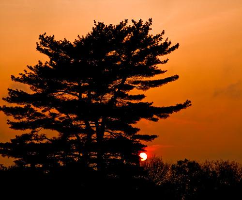 relayforlife sunset