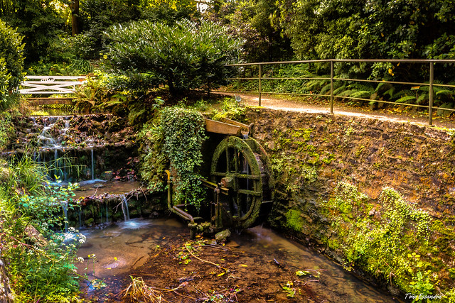 Jardin Botanico , Gijon