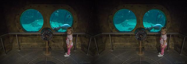 New aquarium in Moscow.