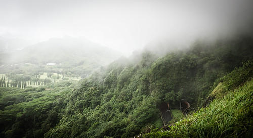 hawaii island oahu travelling mountain misty clouds green nature tunnels view overcast moody forest trees highway mysterious heights mistyandmysteriousheights