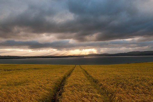 fields lines leadinglines water waterscape swilly clouds sunset sunrays donegal ireland explore explored