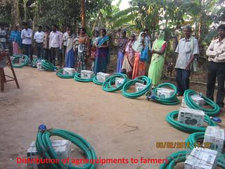 Proyecto Dalmadih (India) (4)