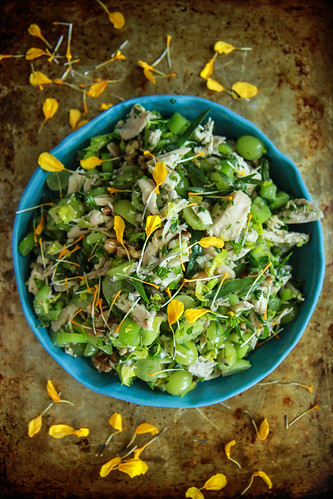 Chicken Tarragon Salad from HeatherChristo.com | by Heather Christo