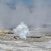 Sidekick Geyser (Fountain Group, Lower Geyser Basin, Yellowstone Hotspot Volcano, nw Wyoming, USA)