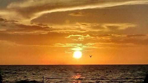 amanecer beach sunrise sunnyislesbeach