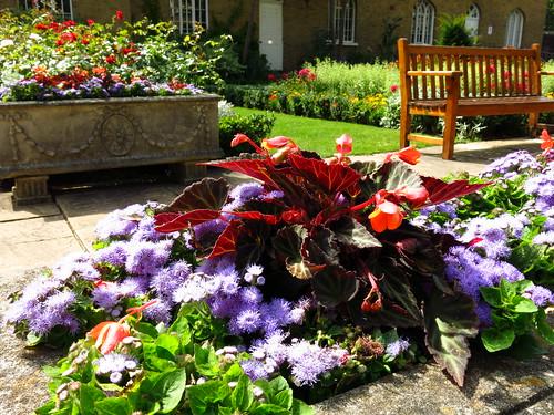 Chumleigh Gardens, Burgess Park | by Laura Nolte