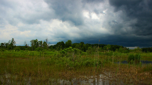Storm over the fen | by phl_with_a_camera1