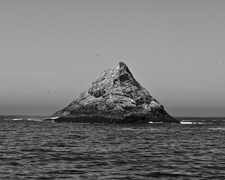 Lonely Island in the Farallons