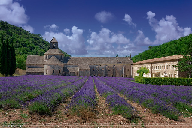 Senanque Abbey (South of France - remastering)