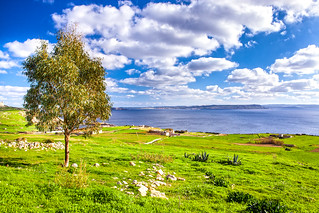 Gozo Island | by lskornog