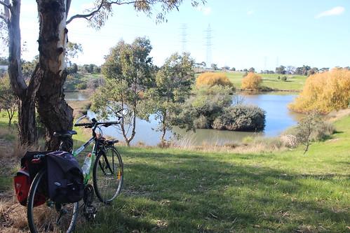 Western Ring Road retarding basin - 100 photos of Merlynston Creek