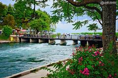 Struga and the river Drim