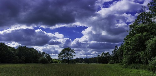 clouds sky trees field june nikon d7200 fields hampshire summer hdr pano panoramic berkshire manfrotto