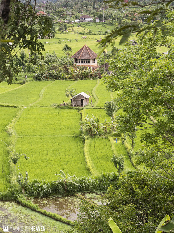 Indonesia - 0087