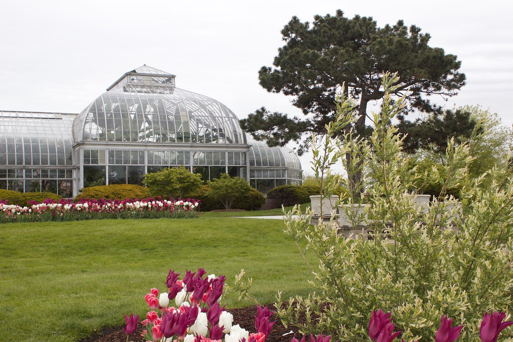 Outside Views of the Belle Isle Conservatory