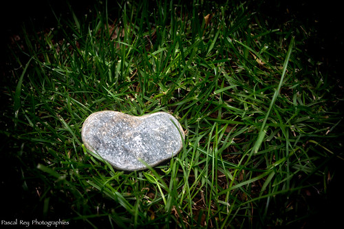 Alles grün, alles gut für Sigrid Haug   by Pascal Rey Photographies