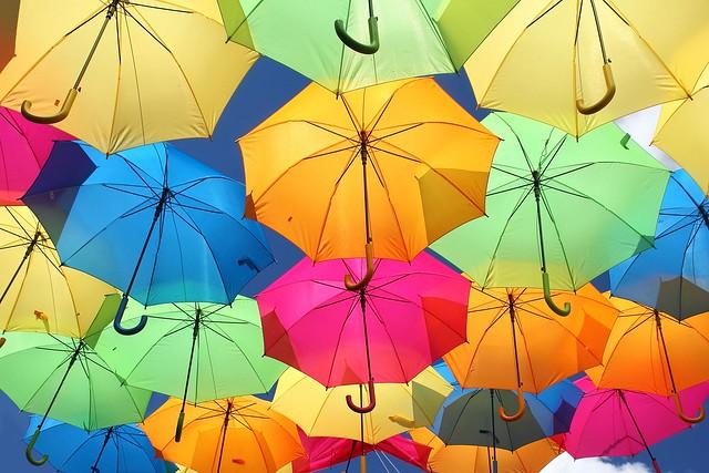 Que de couleurs! / That of colors!