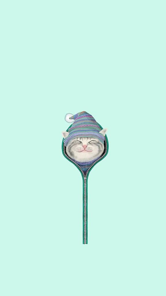 Cute Smiling Cat Zipper Hat Android Wallpaper