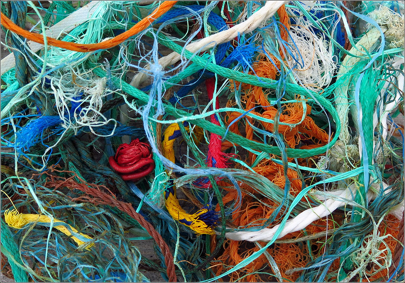 Marine Litter. A Small Selection Of Rope Cuttings.