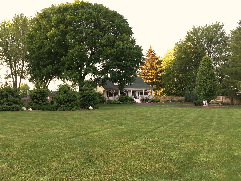 large front lawn