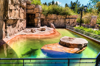 Denver Zoo | by Dave Dugdale